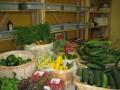 Légumes BIO